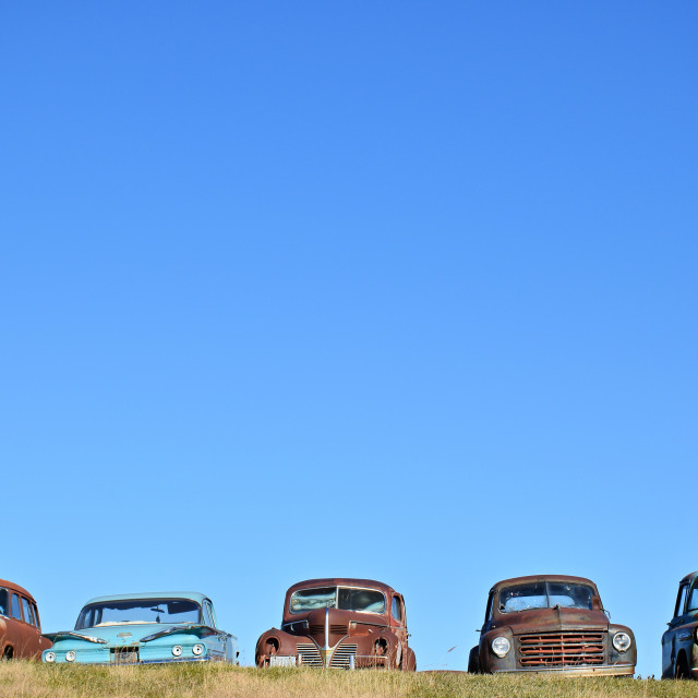 """Old Cars in a Field"" stock image"