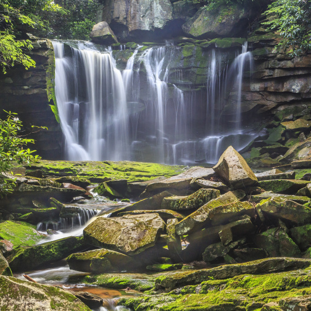 """Elakala Falls"" stock image"