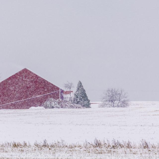"""Winter in Rural Pennsylvania"" stock image"