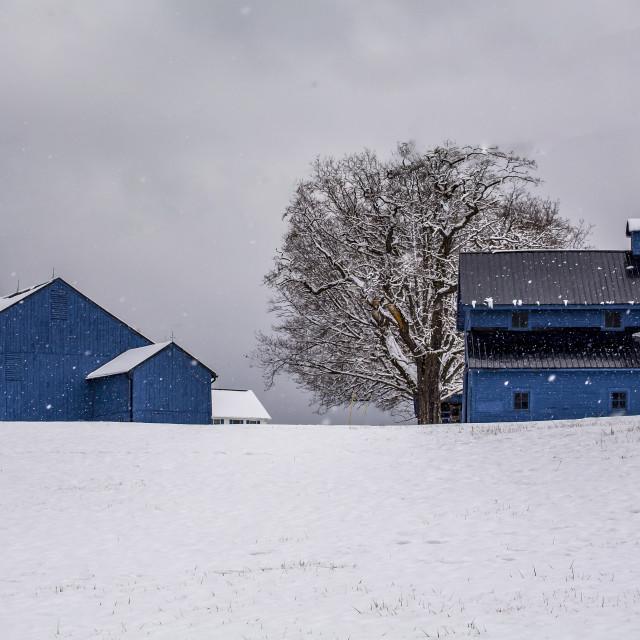 """The Blue Farm"" stock image"