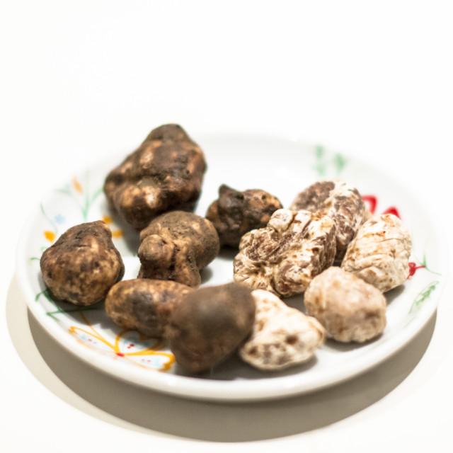 """Tartufo bianco e nero | White and black mushrooms truffle."" stock image"