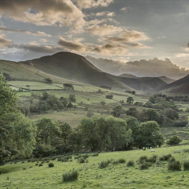 """Evening light through Newlands Valley"" stock image"