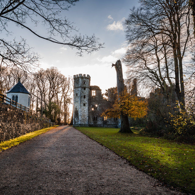 """""""Castle of Mallow and gardens at sunrise"""" stock image"""