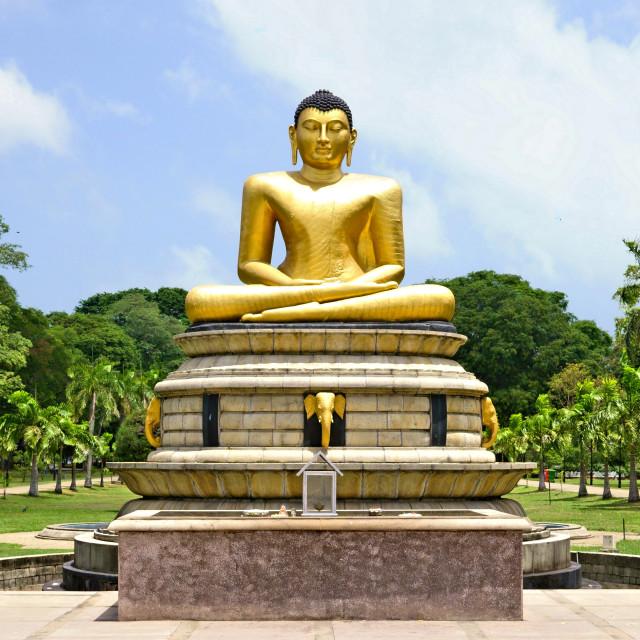 """Buddha in Colombo"" stock image"