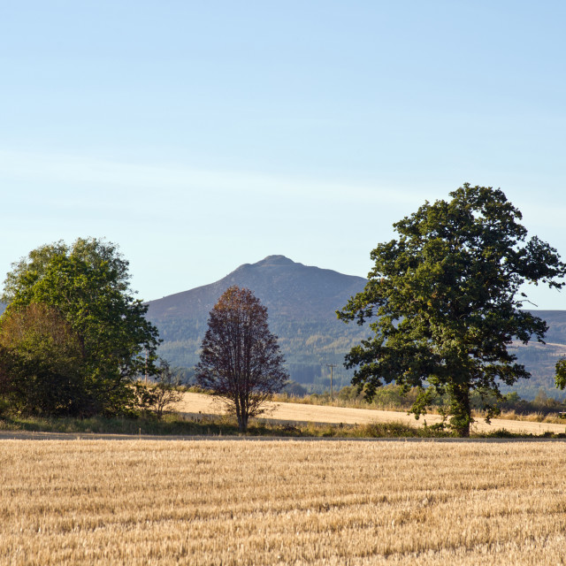 """Bennachie fm Burnhervie"" stock image"