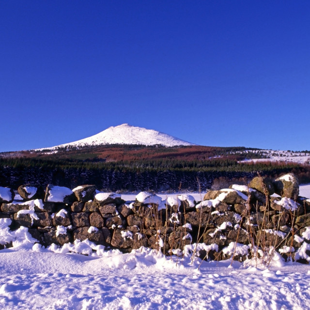 """Snowy Bennachie"" stock image"