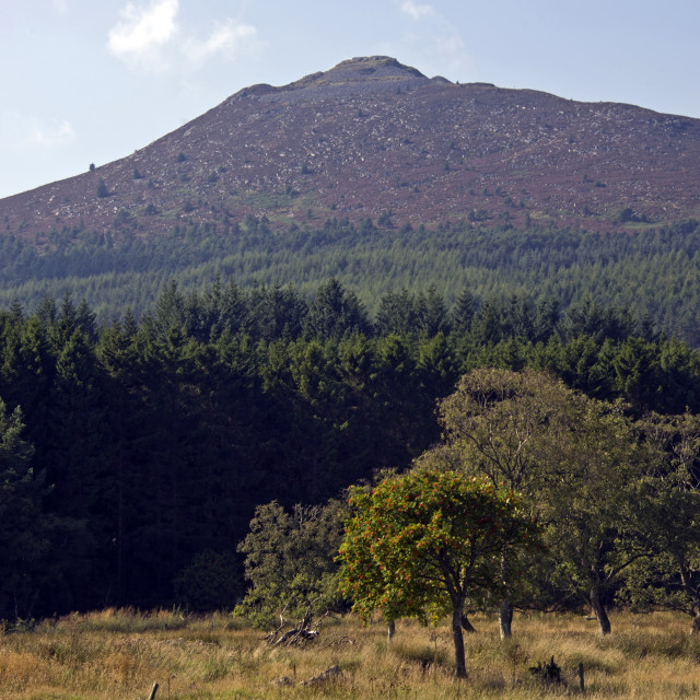 """Bennachie Summit"" stock image"