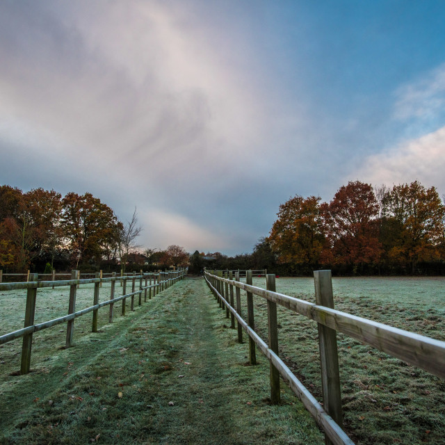 """Frosty Morning at Thorpe Le Soken"" stock image"