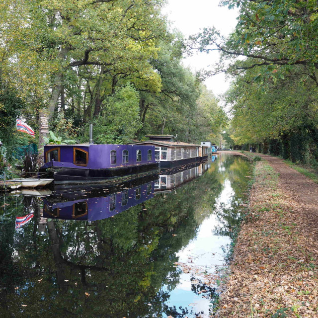 """Houseboats on the Basingstoke Canal"" stock image"