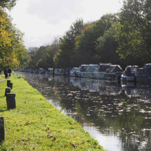 """Boats on the Wey Navigation at New Haw"" stock image"