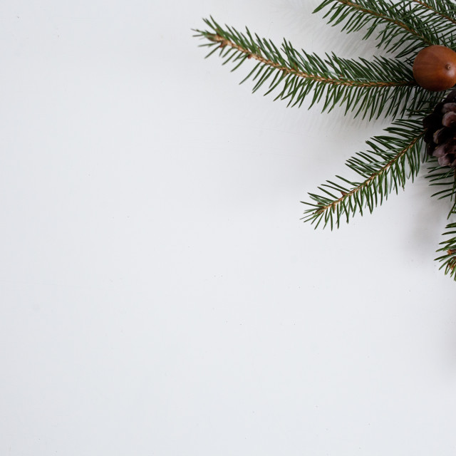 """Pine twigs on the white table"" stock image"