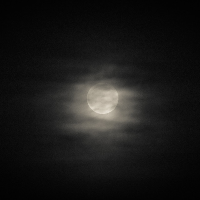 """Cold Moon"" stock image"