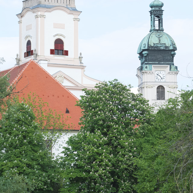 """""""Castle and Cathedral in Gyor City Closeup"""" stock image"""