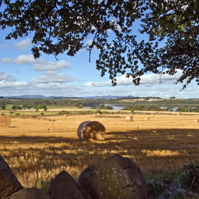 """""""Loch Skene Landscape"""" stock image"""