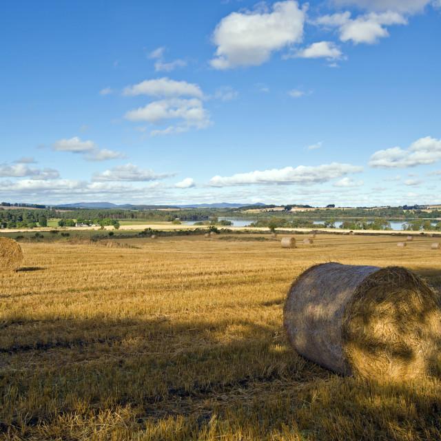 """Loch Skene Panorama"" stock image"