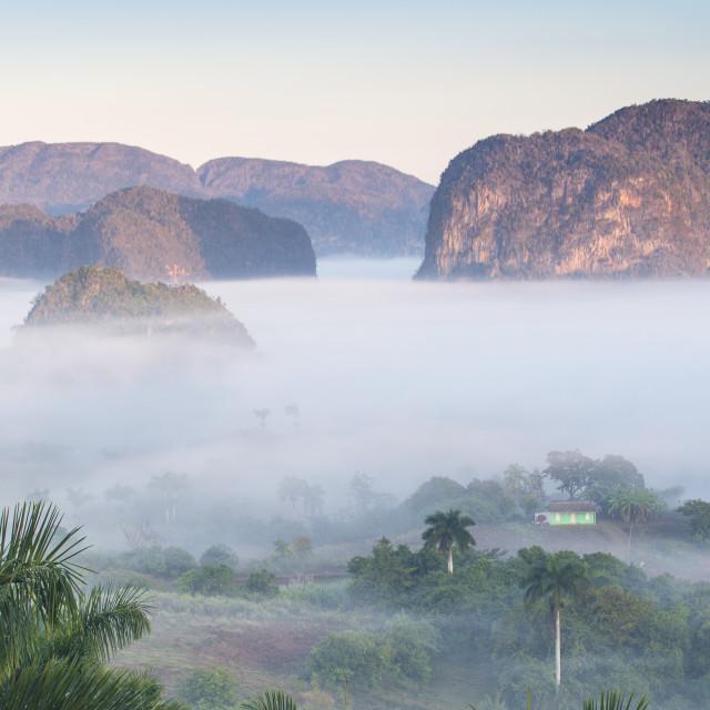 """""""Cuba, Pinar del Río Province, Vinales, View of Vinales valley"""" stock image"""