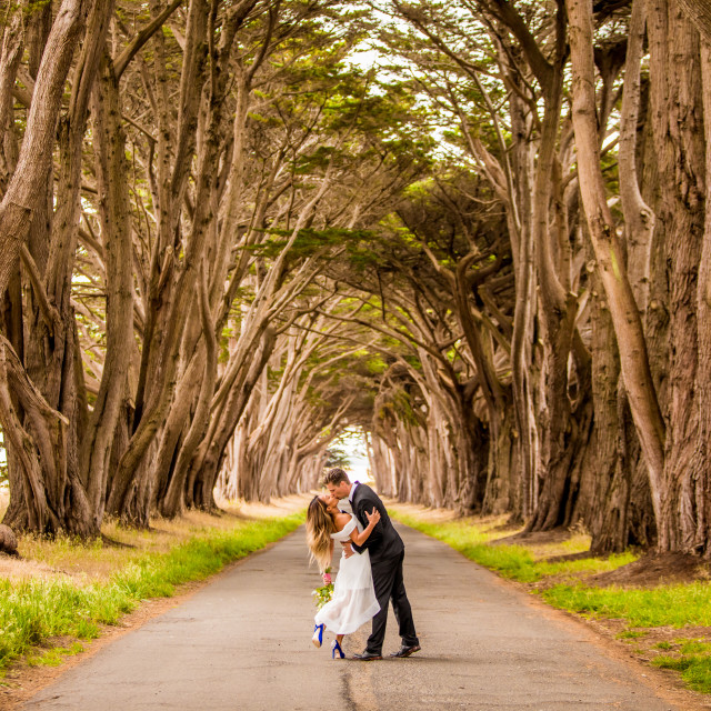 """""""Couple in engagement dress, Marin, California"""" stock image"""