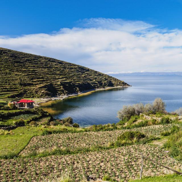 """Island of the Sun, Titicaca Lake, La Paz Department, Bolivia"" stock image"
