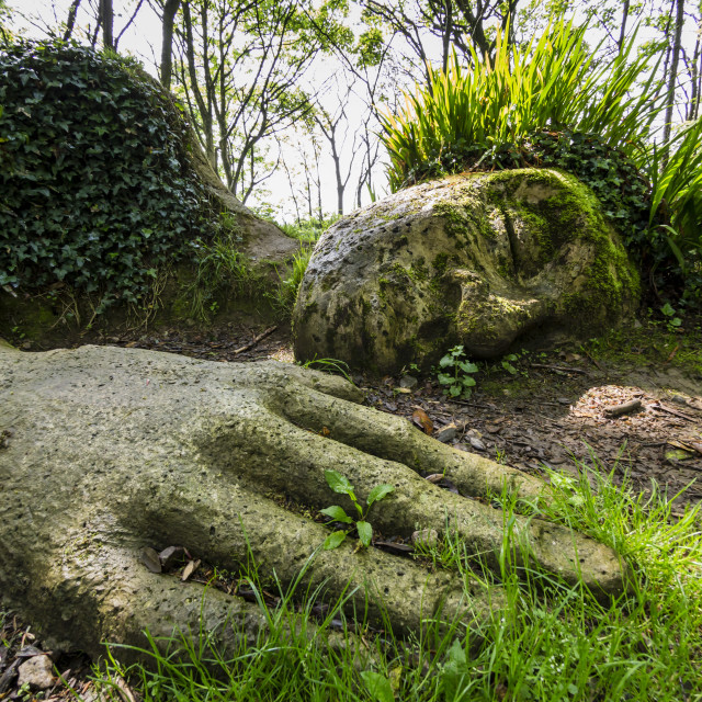"""""""The Mud Maid plant and rock sculpture at the Lost Gardens of Heligan,..."""" stock image"""