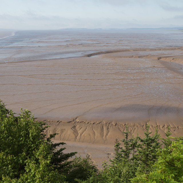 """Mudflats, seen from Hopewell Rocks, on the Bay of Fundy, the location of the..."" stock image"