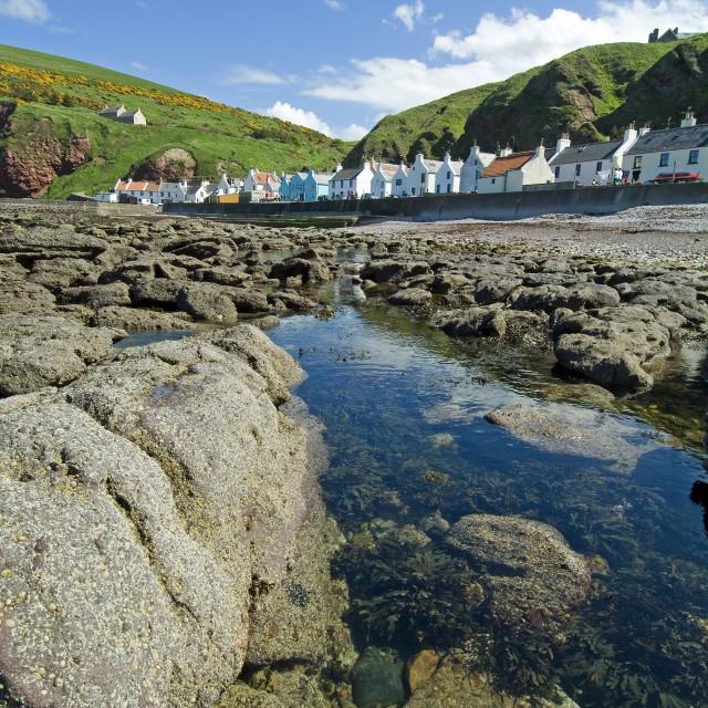 """Pennan Moray Coast"" stock image"