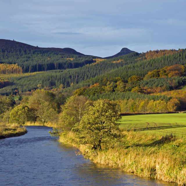 """River Don & Bennachie"" stock image"