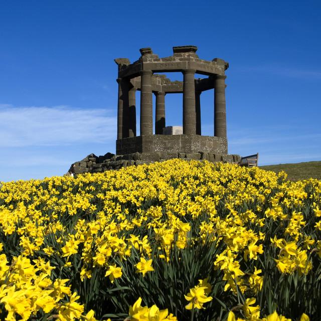 """Stonehaven Memorial Spring"" stock image"