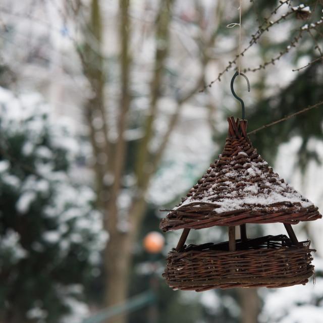 """close up on bird house on winter"" stock image"