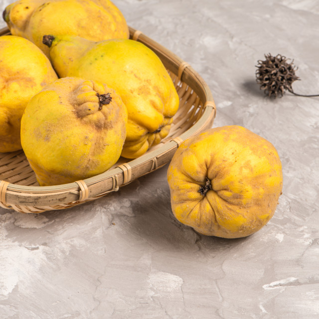"""Ripe quince fruits"" stock image"