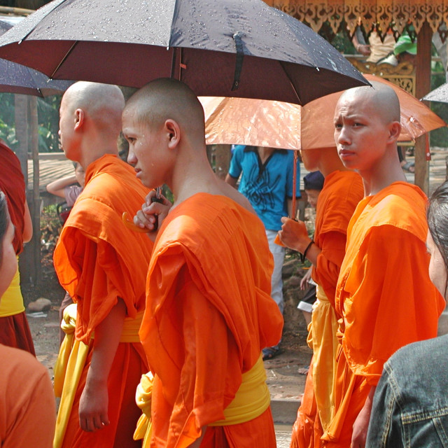 """Wet Monks"" stock image"