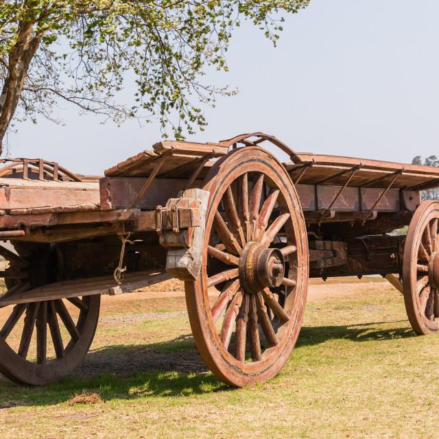 """""""Settlers Ox Wagon"""" stock image"""