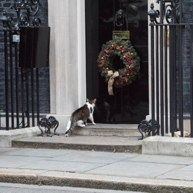 """""""Cabinet meeting, Downing Street"""" stock image"""