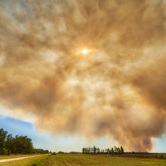 """Wildifire Smoke Plume"" stock image"