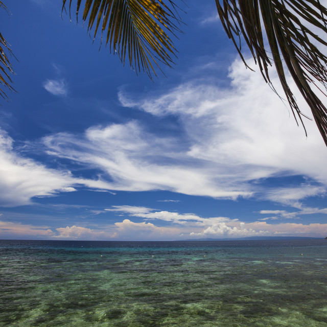 """The Ocean View From Oslob; Moalboal, Cebu, Central Visayas, Philippines"" stock image"