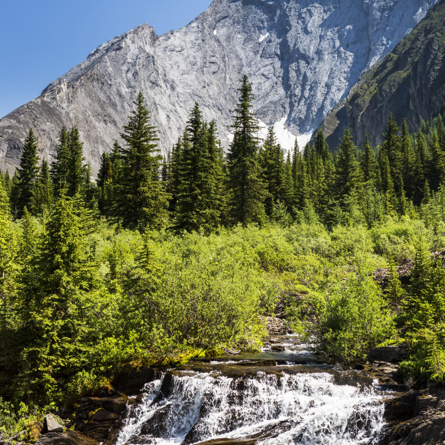 """Creek waterfalls in alpine meadow with rugged mountain and blue sky in the..."" stock image"