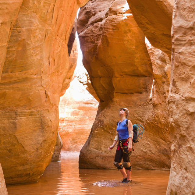 """""""A female adventurer admiring the height of the slot canyon she is surrounded..."""" stock image"""