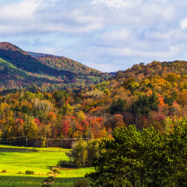 """Landscape of forests on the hills with autumn coloured foliage; Iron Hill,..."" stock image"