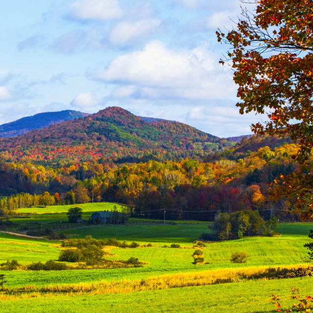 """Landscape of forests on the hills with autumn coloured foliage and lush green..."" stock image"