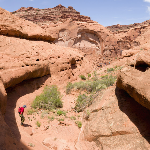 """""""Man crossing a desert canyon with team in distant background walking a trail..."""" stock image"""