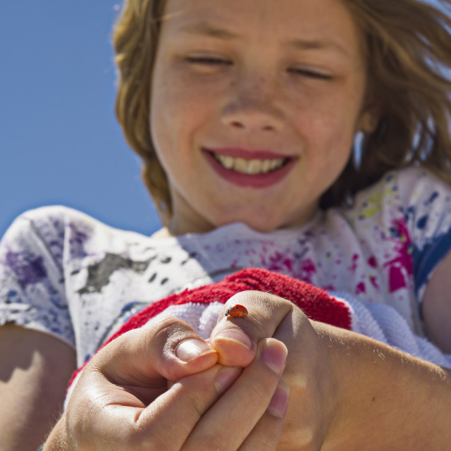 """""""A young girl shows off a ladybug (Coccinellidae) she caught and is holding on..."""" stock image"""