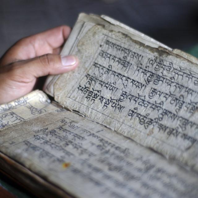 """Hemis Monastery, Leh Ladakh, India"" stock image"