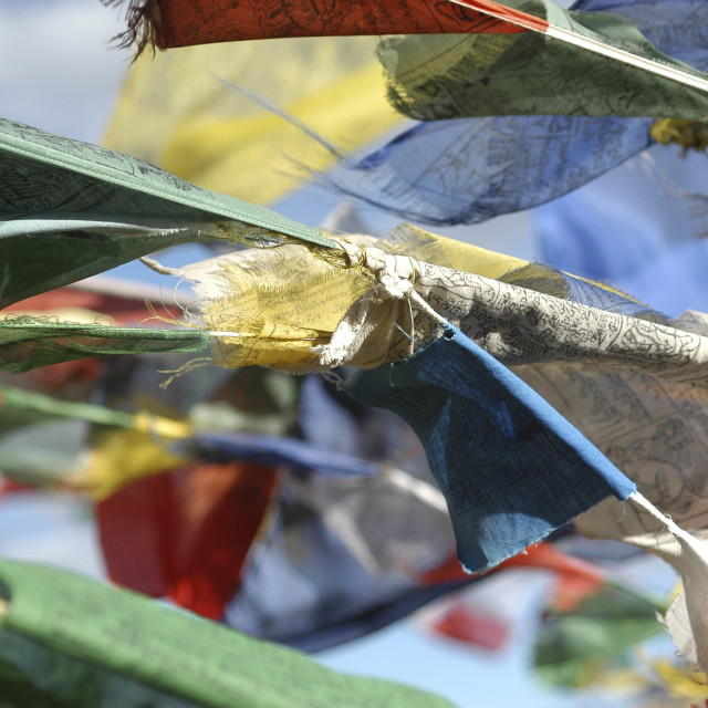"""Buddhist prayer flags"" stock image"