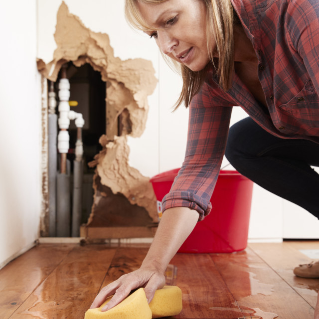 """""""Woman mopping up water from a burst pipe with sponge, vertical"""" stock image"""