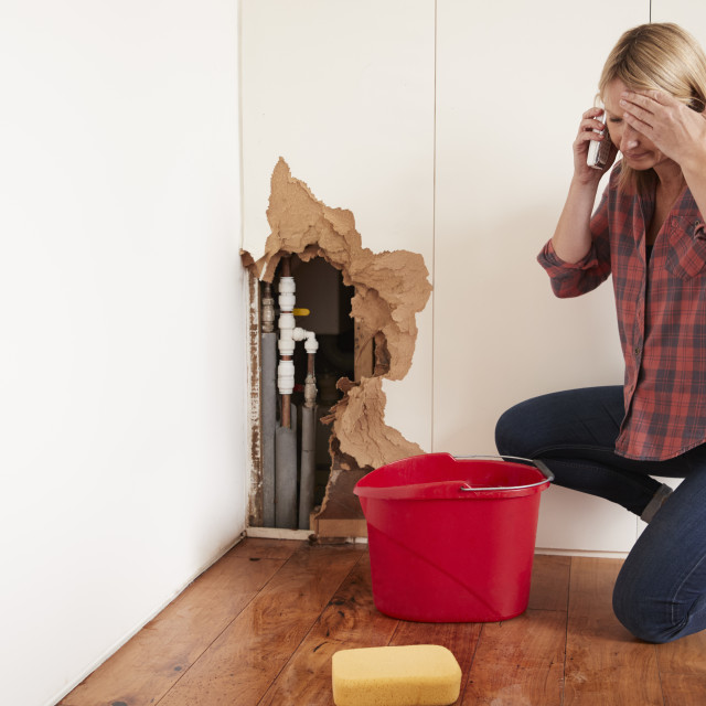 """""""Middle aged woman with a burst water pipe phoning for help"""" stock image"""