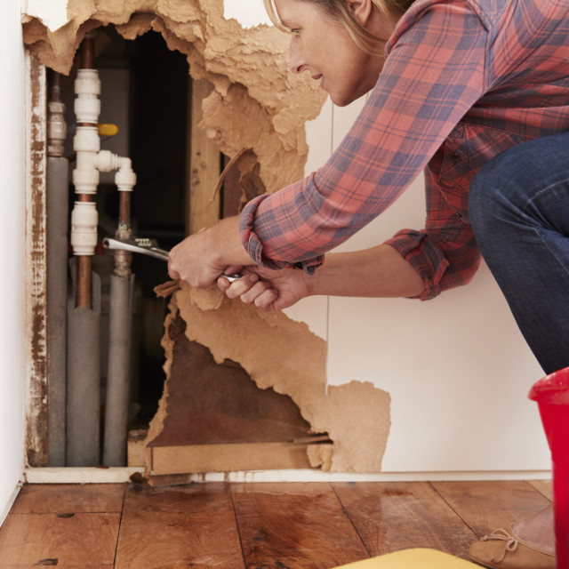 """""""Middle aged woman repairing burst water pipe, vertical"""" stock image"""