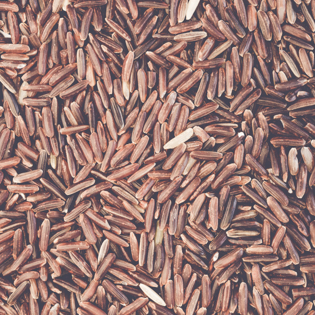 """wholemeal brown rice grains"" stock image"