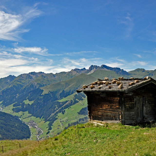 """Alpine hut"" stock image"