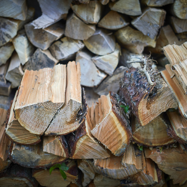 """Split logs for wood fire"" stock image"