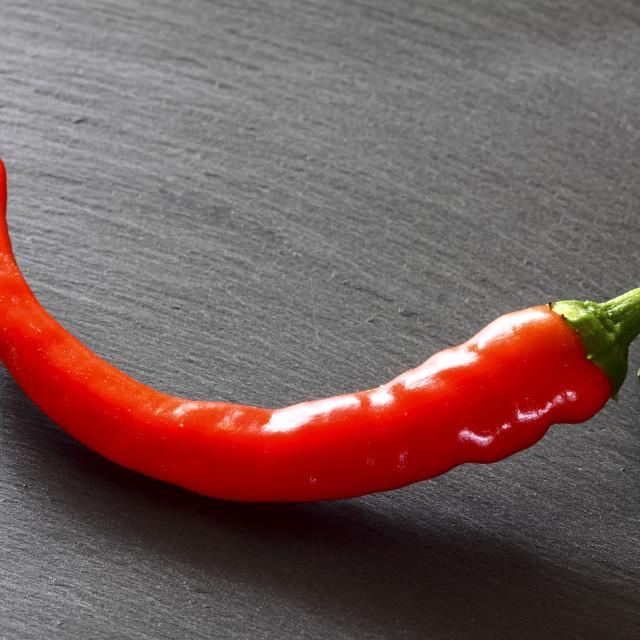 """Red chilli pepper"" stock image"