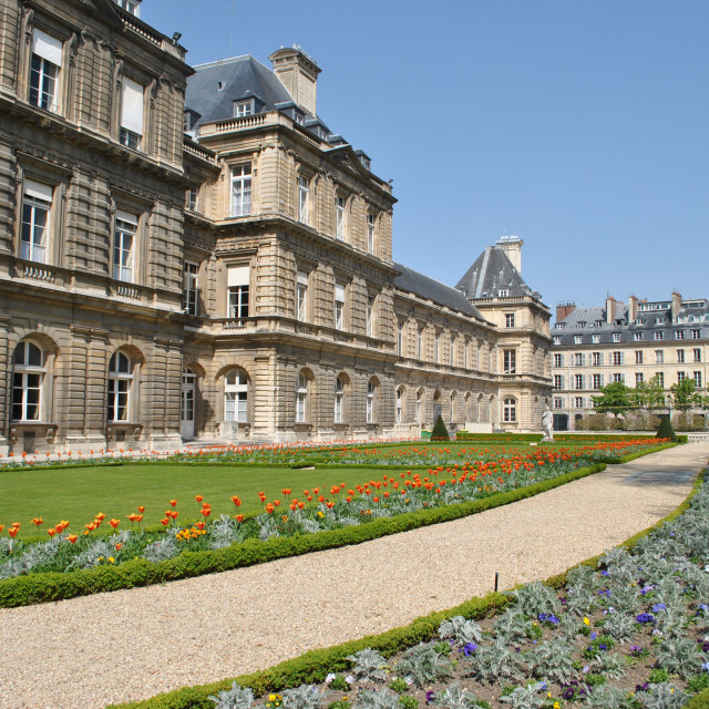 """Tuileries Garden, buildings along the Rue de Rivoli, Paris, France"" stock image"